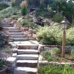 siloam steps