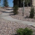 paver pathway landscaping
