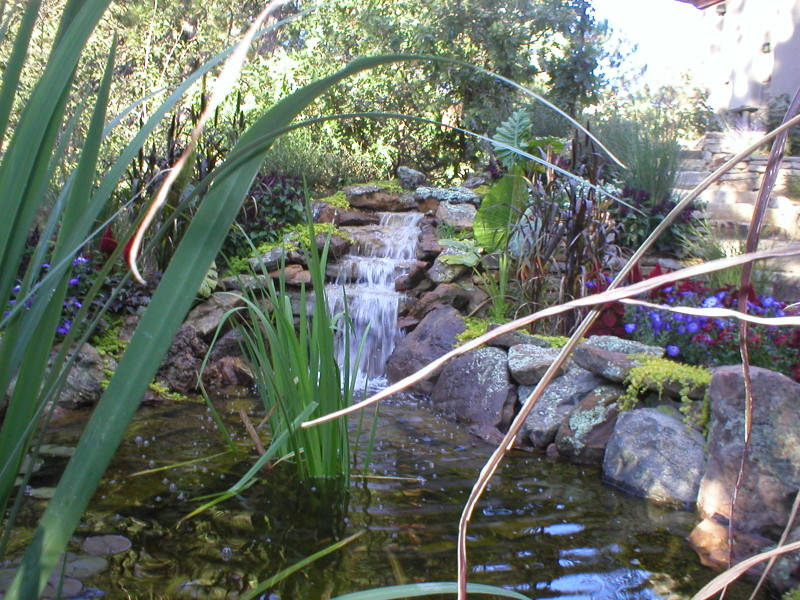 Natural Water Features