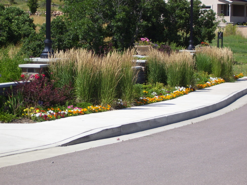 Landscaping materials colorado springs landscaping plant for Designing with grasses
