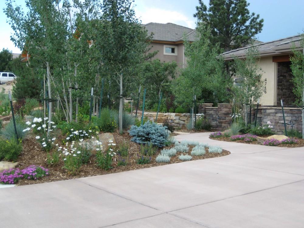 Xeriscape design colorado springs landscape design for Dry scape landscaping