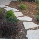 Stepping pathway landscaping