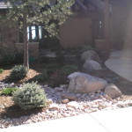 accent boulders in landscape design