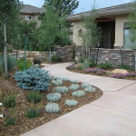 Rocky Mtn. entry-after landscaping