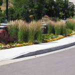 Colorado Springs materials landscaping Ornamental grasses