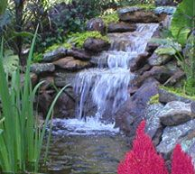 If maintenance is a concern consider a bubbling boulder, which is the most self-sufficient water feature available.