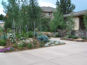 Xeriscaping is a water-friendly approach to creating a beautiful garden that thrives in its region