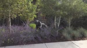 Bear Sculpture in Landscape