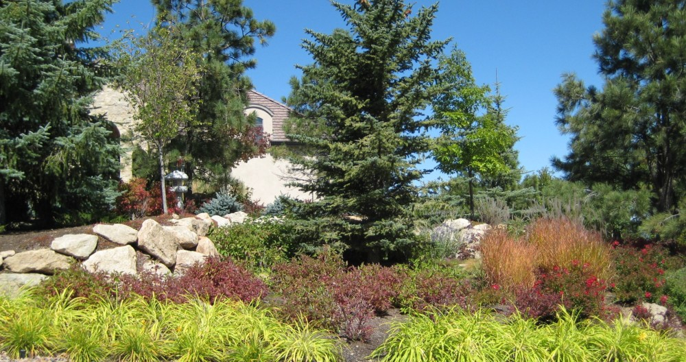 Colorado Landscape Ideas Perfect For Summer