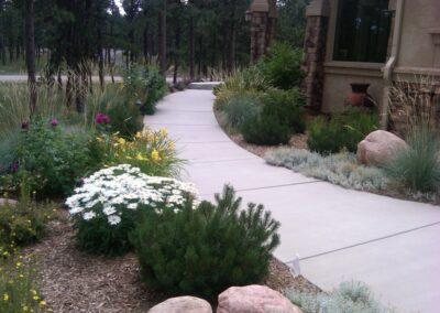 Path | Plantings