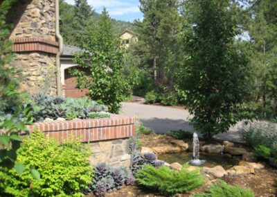 Water Feature | Plantings | Aspen Trees