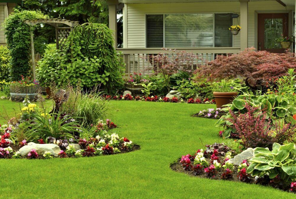 Lawn | Plantings | Spring